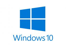 MICROSOFT Windows 10 Professional Citizenship